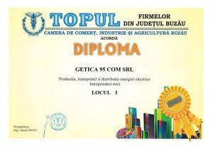 getica-95-topul-firmelor2013